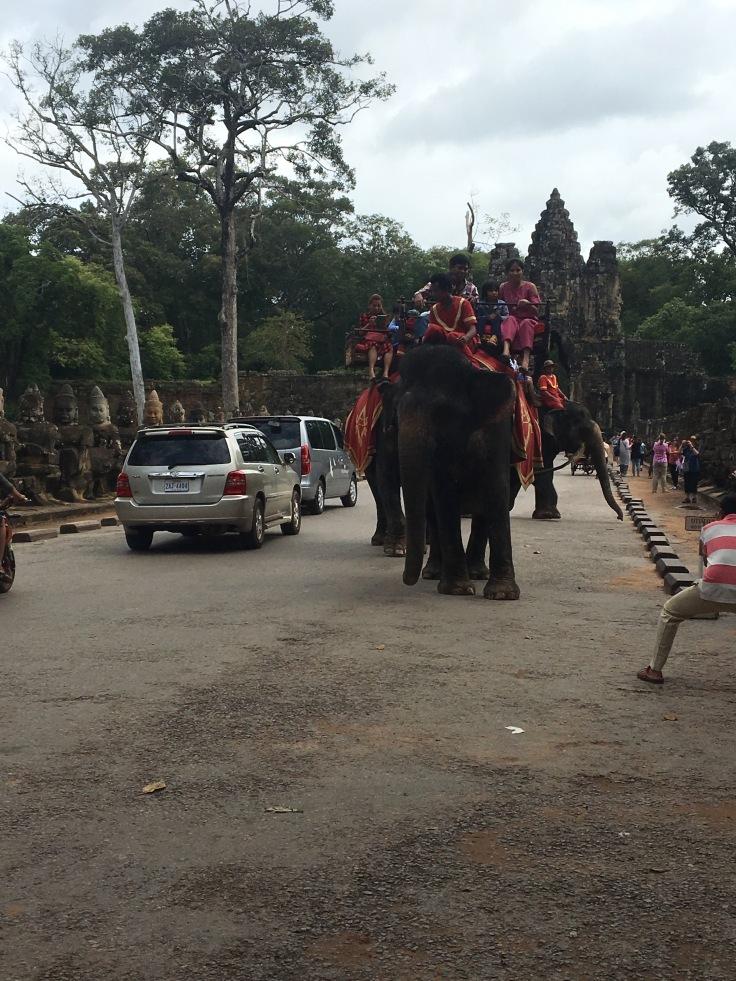 siem reap angkor wat bayon temple elephants