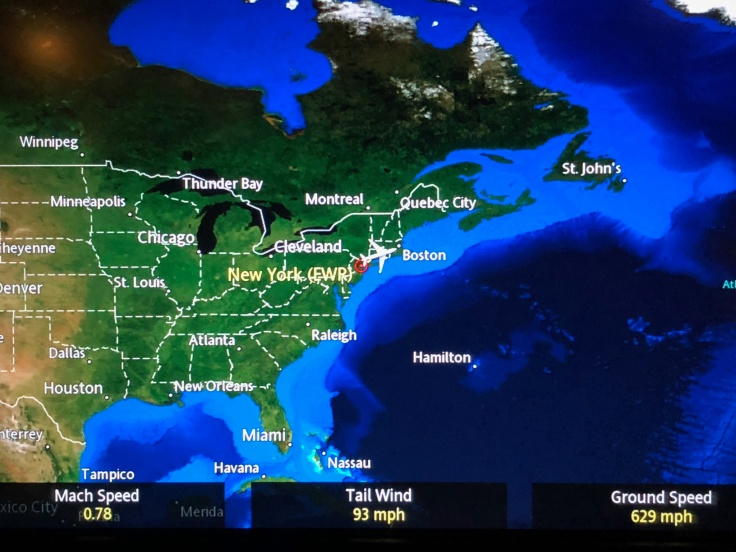 united airlines polaris business diamond entertainment moving map