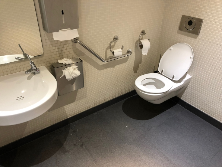 air france business salon cdg restroom bathroom stall
