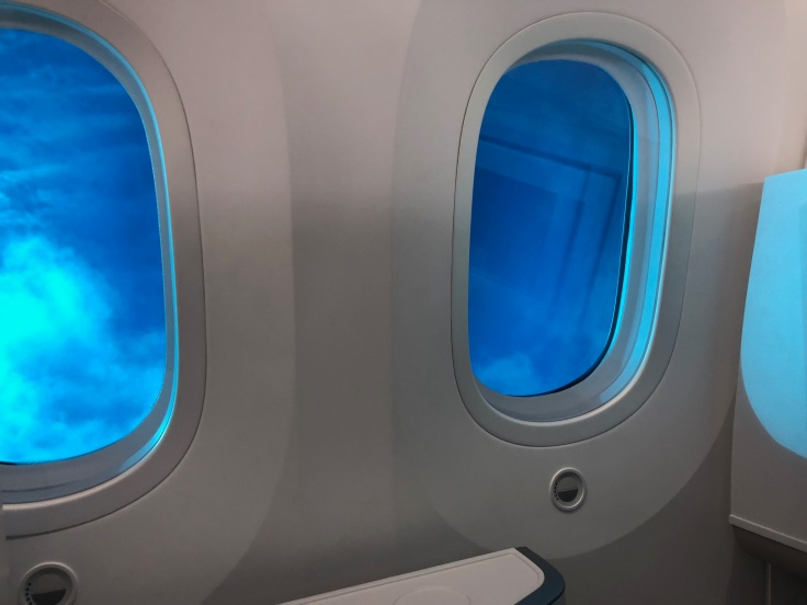 air france business view tinted windows