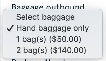 2019 Norwegian Air Booking 06 Passenger Info 3 Bags