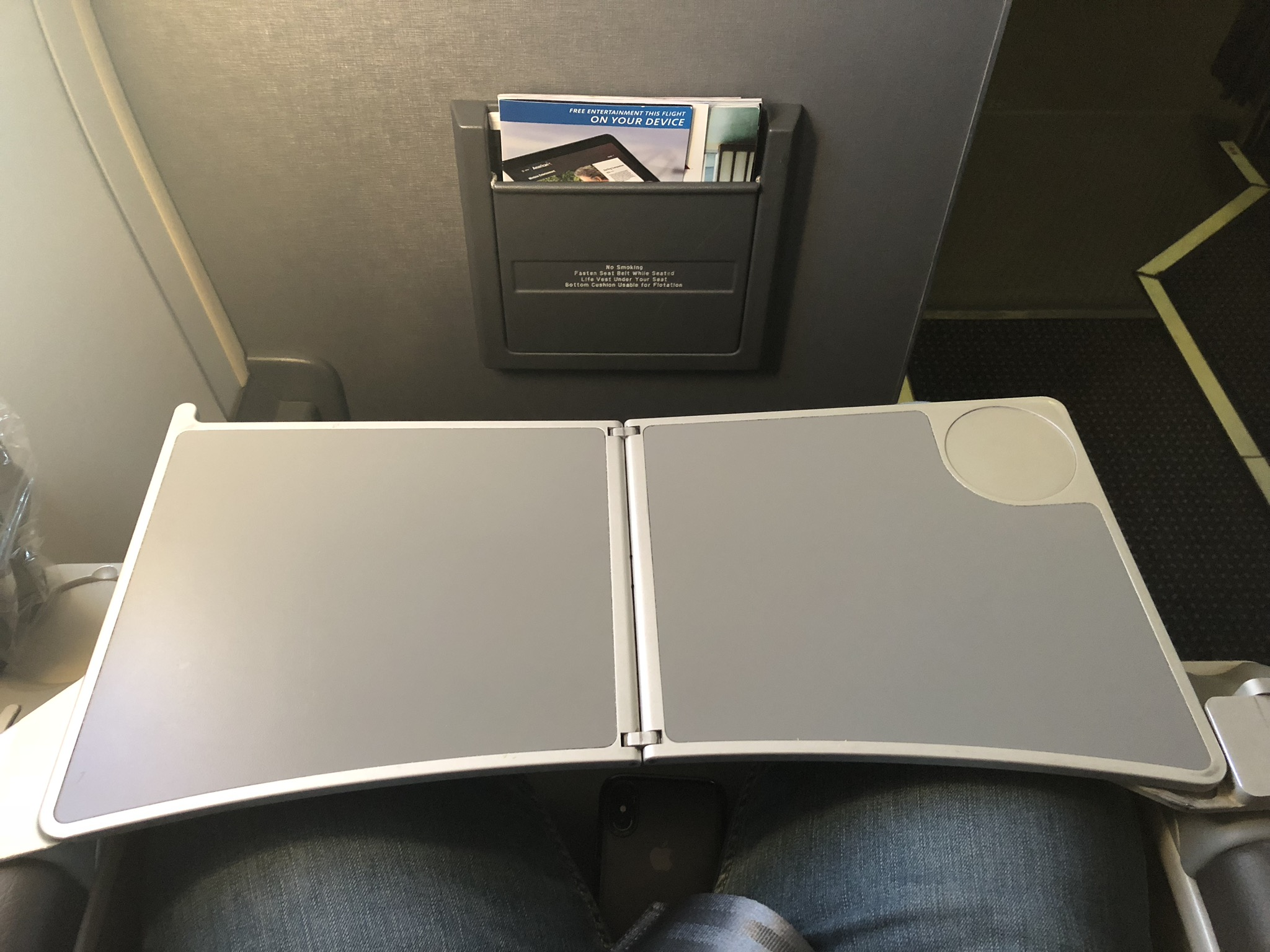 2020 american airlines domestic first hard tray table
