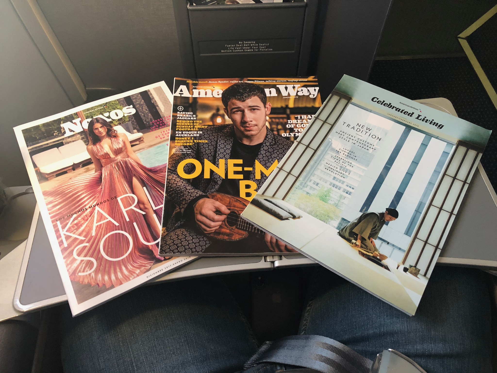 2020 american airlines domestic first soft literature