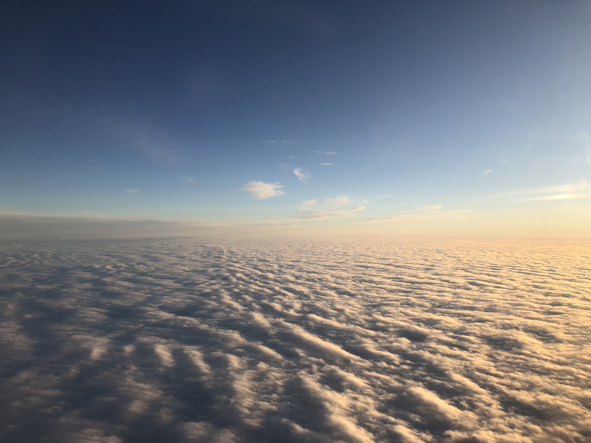 2020 american airlines domestic first view above the clouds